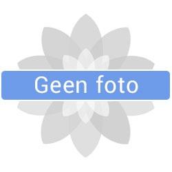 foto ritcchie
