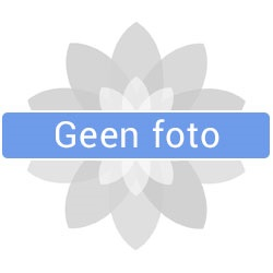 foto Massage-is-fijn