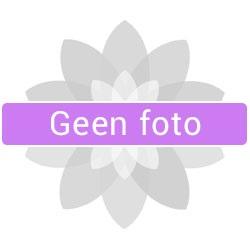 foto yin_yang